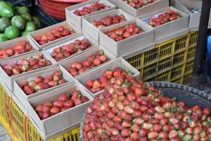 市場のイチゴたち